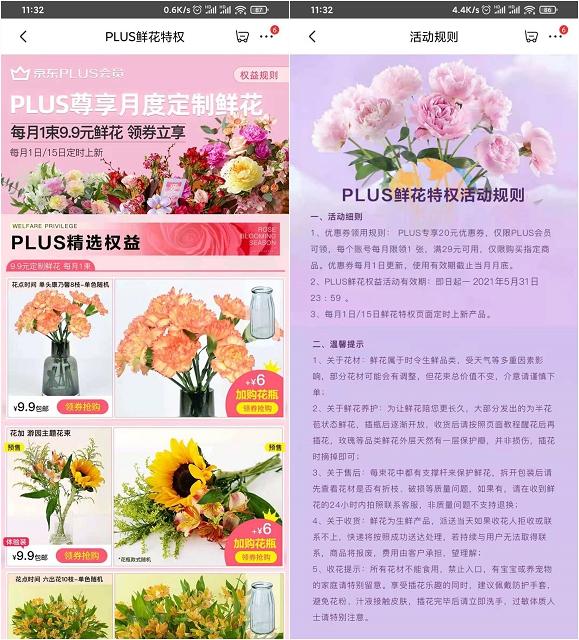 京东PLUS领鲜花特权 9.9元购买8枝康乃馨-90咸鱼网
